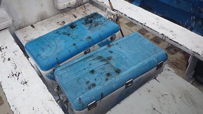 船も備品もイカスミまみれ。