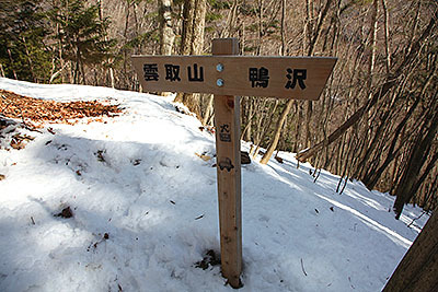最もポピュラーな鴨沢コースを登ります。標高差1500m、距離が片道11kmくらい。