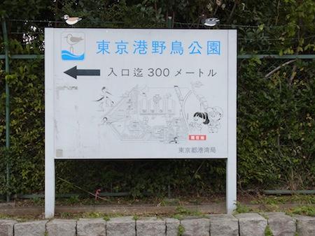 東京都立港野鳥公園
