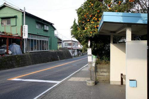逗子駅から30分程で前田橋バス停に到着だ