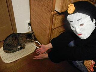 その写真が掲載NGだったので全然関係ない写真 (いとこの家の猫と)