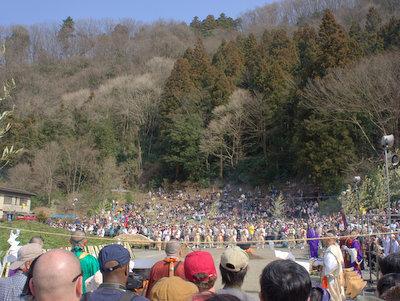 高尾山と言えば杉。杉といえば花粉。