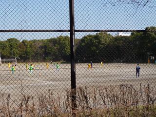 森だけにサッカーする森の住民や