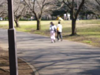 ジョギングする森の住民も。