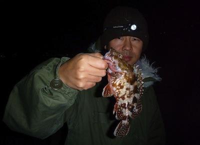 私が釣った魚です(トレーサビリティな感じで)