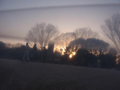 透明ビニール越しの景色