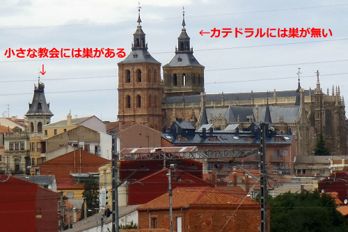 アストルガという町の例。小さな教会の方に巣を作っている