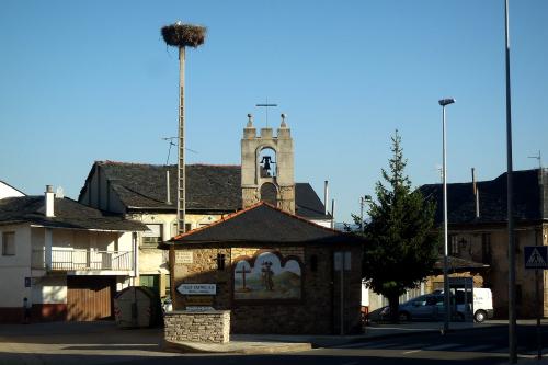いかにも巣が作られそうな鐘楼を持つ礼拝堂の隣に人工巣塔