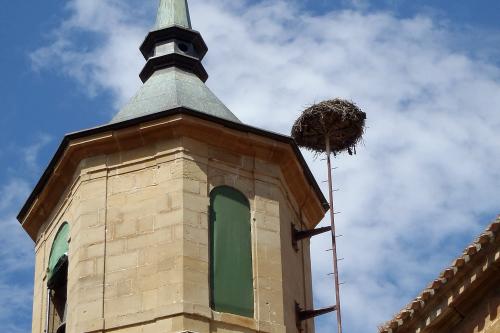 わざわざ鐘楼の屋根と同じ高さに作るあたり、コウノトリ愛を感じる