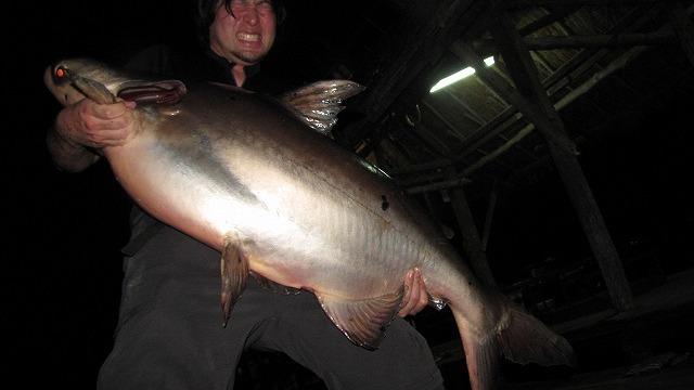 この顔は別に感動して泣いてるとかじゃなくて、魚が重くてつらいだけです。