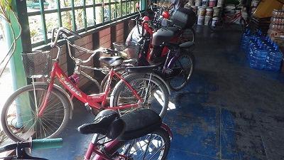 広すぎるので移動に自転車を使うことも。