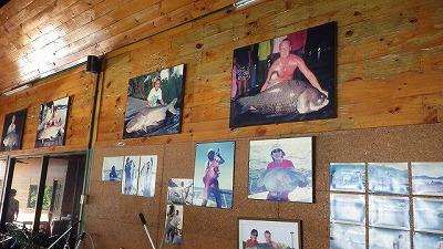 あちこちに飾られている巨大魚の写真。そのほとんどがこの釣り堀で釣られた魚たちだ。