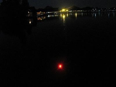 夜間は発光するウキを使う。