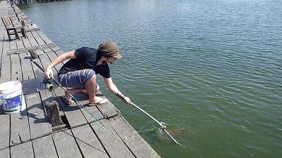 延々釣り続けているとさすがに慣れてきて、エサのダンゴ作りから魚のキャッチまで一人でこなせるようになってしまった。