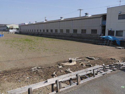 工場のとなり。たしかに羊が飼えそうなくらい広い空き地ではあるが