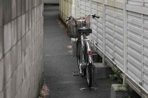 自転車1台がぎりぎり