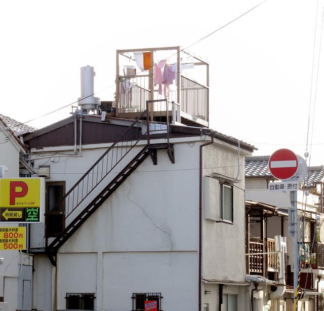 誇らしげ。凛々しい後バ。それにしても階段とそこに出るための2階の扉も後付けだろうか。