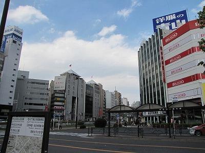 五反田駅前の風景。コンクリートだらけで生きものなんていないようだが…。
