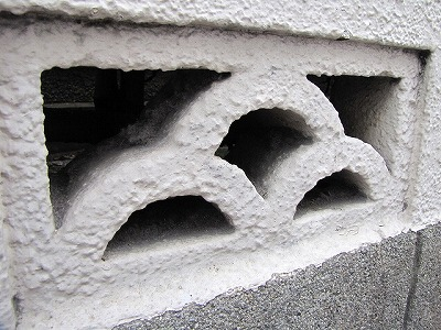 こんなブロック、僕の地元なら百発百中でクモの巣が張られているんだけどなあ…。