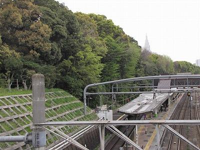 原宿駅の裏には明治神宮の鎮守の森広がる。
