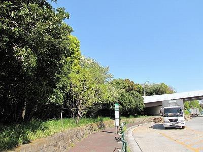 東京港野鳥公園は東京都中央卸売市場に隣接している。今回は時間内に入園できず。