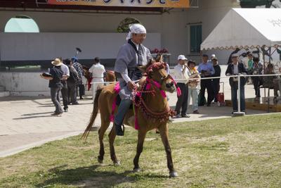 与那国馬に乗って、与那国の衣装をまとっておられます (優勝候補だったものの2回戦で敗退されました)