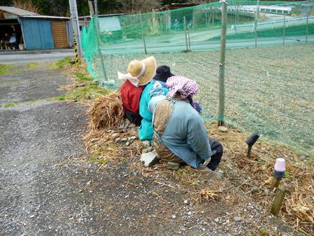 農作業を眺める3人のご婦人たちも
