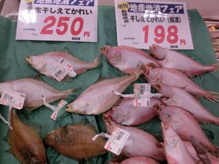 鳥取でスーパーに行くとかれいは本当によく見かけた