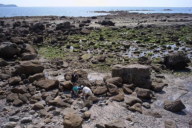 干潮時刻に合わせてやって来た。ここで化石を探す。