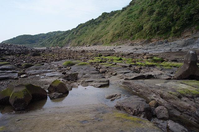 ここで化石を探す。