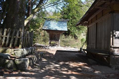 さくらいさんは「正月の初詣は必ずここなので、普通の神社に行っておみくじ引いたりしてみたい」と言っていた