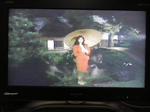肩パットの入った服をきたお姉さんが池の前に佇んでいた