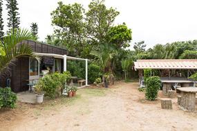 マンタの浜前にある茶屋。手作りジェラートが美味しい