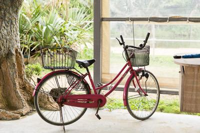 やんちゃな自転車