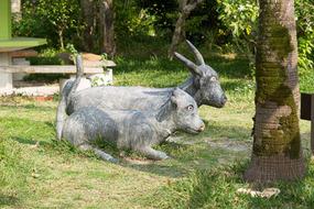 水牛なのかヤギなのか。それともロバか