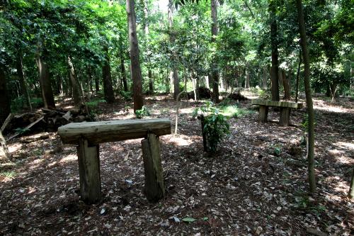 間伐材を利用したベンチのようなものも置かれているし