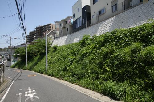 この坂沿いの斜面に防空壕は存在した