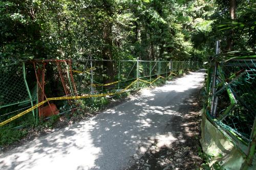 路地の左右にフェンスが張られ、森に入れなくなっていた