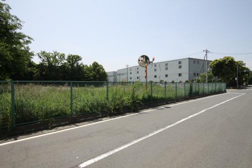 北側の森は拓かれ、企業の建物が並ぶ