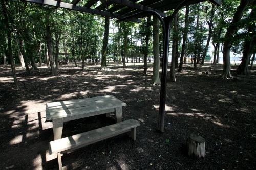 その企業の横には、森の木々を活かした公園があった