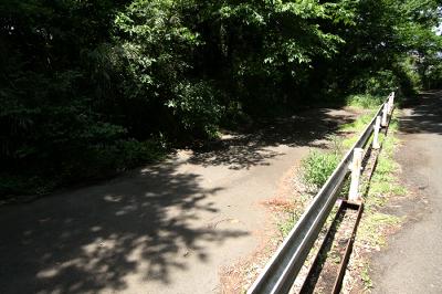 森の北側には前回特集した「ご近所廃道」も見られた