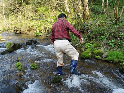佐渡は渓流がどこも綺麗でした。