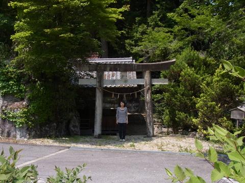 小さい神社にいたトカゲに悲鳴をあげる東京っこ