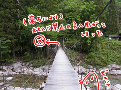 つり橋を渡るところまできた。しかしいつもの道は今封鎖されているようだ。右に行くのが正解。
