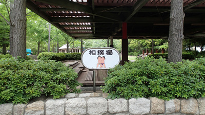 地域の相撲大会なども行われる本格的な土俵