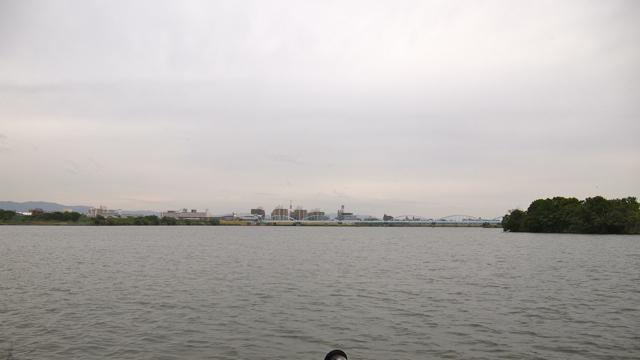 淀川、広い!