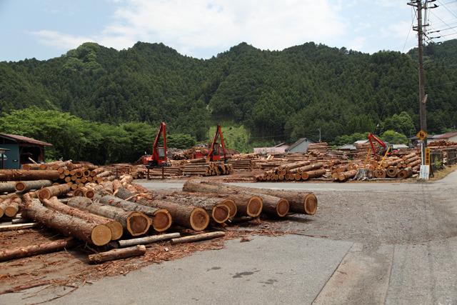 丸太が山積みの市場があって木の香りがすごい