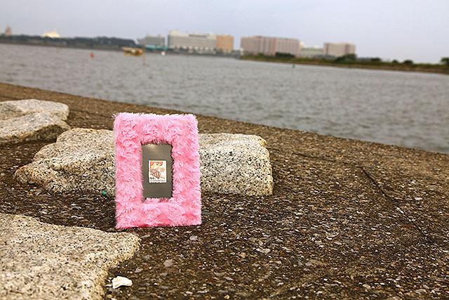 海の向こうはディスニーリゾート。海辺で写真を撮れば大体絵になる。