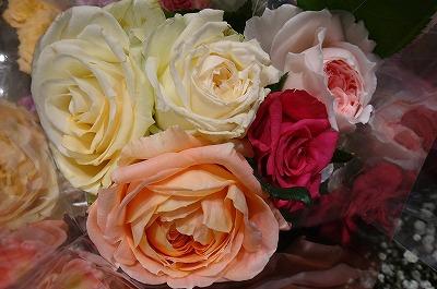 「ザ・お花」としての風格