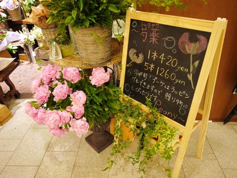 東京ミッドタウンの花屋では芍薬の季節(5月が旬)
